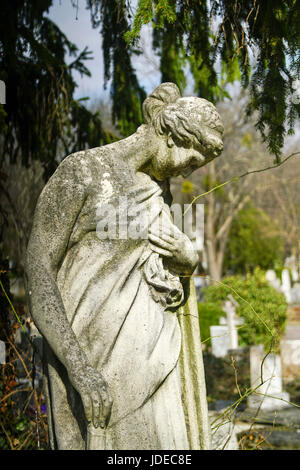 Statue of a grieving woman in a cemetery - Stock Photo
