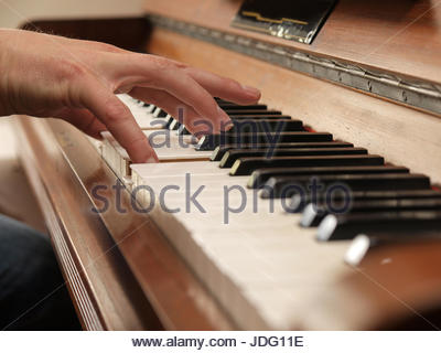 study, music, classical, piano, wooden, learning, clasic, classic, study, - Stock Photo