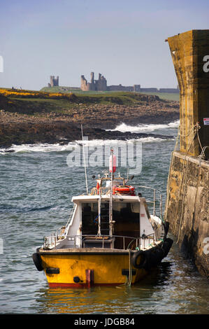 Craster harbour, Northumberland - Stock Photo