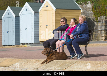 Three people sitting on bench enjoying the sunshine with dog at their feet at Bournemouth, Dorset in April - Stock Photo