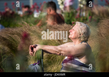 London, UK. 20th June, 2017. UK Weather: Locals enjoy the late afternoon heat near Greenwich Pier ending one of - Stock Photo
