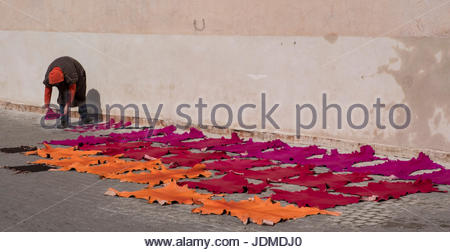 Drying leather just dyed on the streets of the Medina of Marrakesh. - Stock Photo