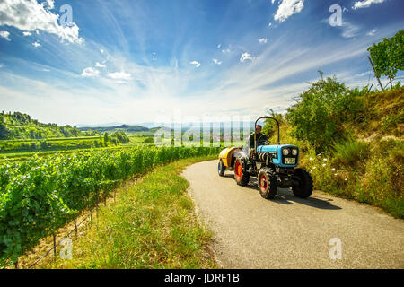 KAISERSTUHL, GERMANY - JULY 30, 2016: Unidentified agricultural worker driving a tractor on a country road, passing - Stock Photo