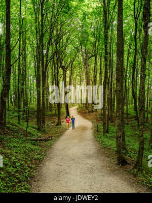 Pictured Rocks National Lakeshore, Michigan, August 10, 2016: young couple is walking on a trail to Miners Falls - Stock Photo