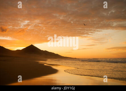Cofete beach at sunset on the undeveloped south west coast of Fuerteventura, Canary Islands, Spain - Stock Photo