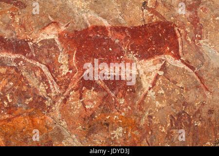 Bushmen (san) rock painting of an eland antelope, Drakensberg mountains, South Africa - Stock Photo