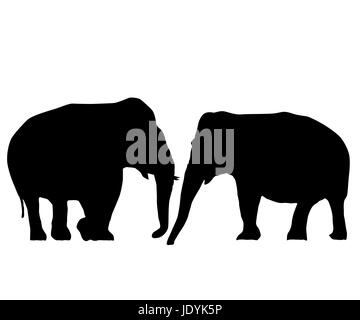 Two elephants love card, isolated objects on white background - Stock Photo