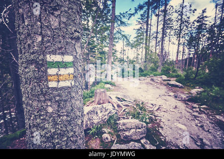 Vintage toned hiking trail marking painted on tree in High Tatra Mountains, Slovakia. - Stock Photo