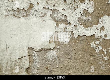 wandputz wall plaster stock photo mit rolle auftragen