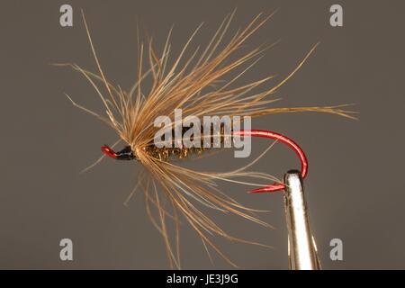 Steelhead streamer fishing fly - Stock Photo