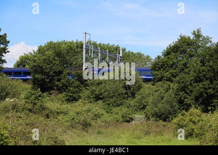 A High sped train flashes through a gap in the greenery along an embankment under all the newly installed Overhead - Stock Photo