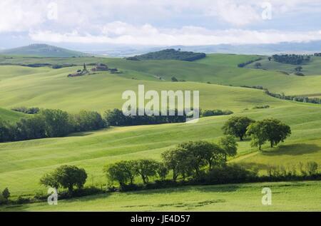 Toskana Huegel  - Tuscany hills 60 - Stock Photo