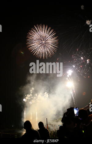 Fireworks with Silhouettes - Stock Photo