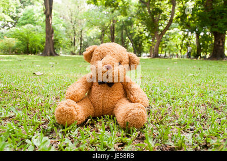 doll toy on green grass, soft focus - Stock Photo