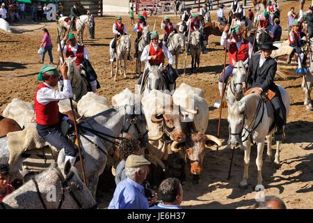 Wild bulls herdsmen, the 'campinos'. Samora Correia, Ribatejo. Portugal - Stock Photo