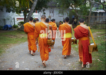 Laos, province of Luang Prabang, city of Luang Prabang, UNESCO world heritage, Buddhist monks collect alms and rice, Stock Photo