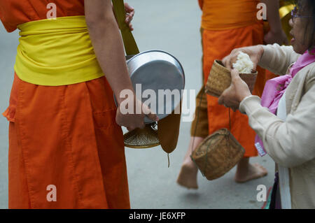 Laos, province of Luang Prabang, city of Luang Prabang, Buddhist monks collect alms and rice, - Stock Photo