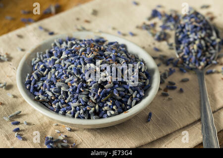 Raw Organic Dry Purple Lavender Spice in a Bowl - Stock Photo