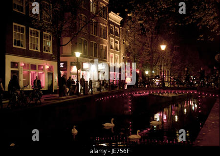 Holland, the Netherlands, Amsterdam, red light area, swans on the water, - Stock Photo
