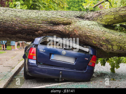 Hamburg, Germany. 22nd June, 2017. A chestnut tree felled during heavy storms lies on top of a crushed car in Hamburg, - Stock Photo