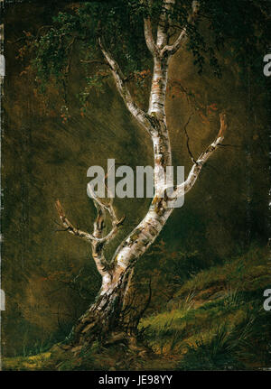 Johan Christian Dahl - Study of a Birch Tree -