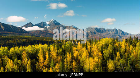 Fall is approaching in the Chugach National Forest Alaska - Stock Photo