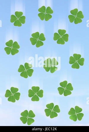 4-leaved cloverleaves, four-leafed clover, - Stock Photo
