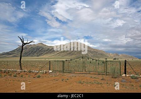 Africa, South-West Africa, Namiba, Namib Naukluft park, Namib margin, desert, farm driveway, half desert, dunes, - Stock Photo