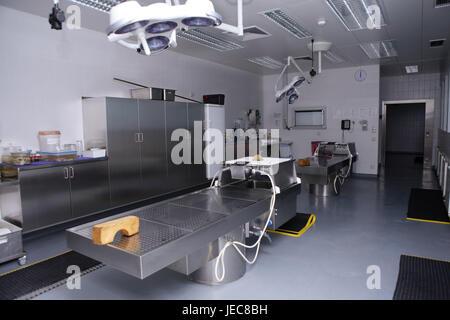 Hospital, pathological-anatomical department, Prosektur, dissected broad, medicine, hospital department, morgue, - Stock Photo