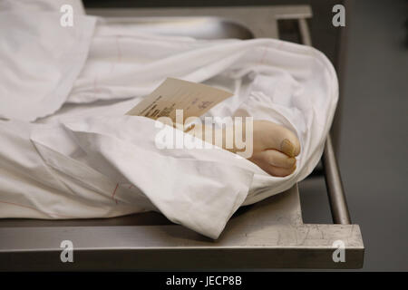 Hospital, pathological-anatomical department, Prosektur, bier, person, deadly, detail, foot, slip of paper, medicine, - Stock Photo