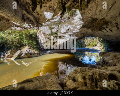 New Zealand, South Island, Westcoast, Oparara River, rock tunnel Moria Gate Arch - Stock Photo