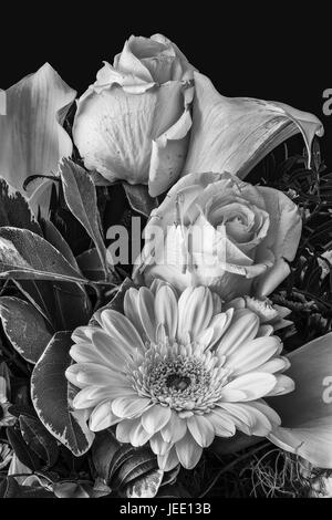 Vintage style fine art still life monochrome black and white  floral detailed texture macro portrait of a flower - Stock Photo