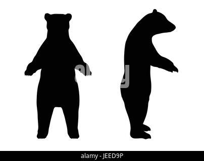 EPS 10 vector illustration of Bear silhouette - Stock Photo