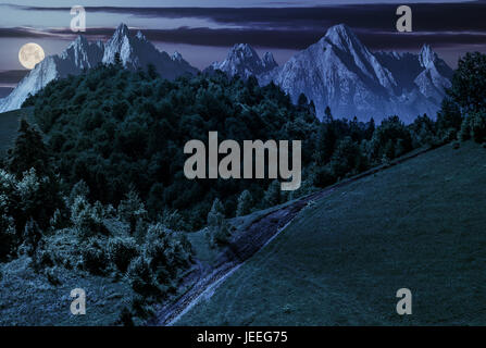 footpath uphill through forest on hillside. composite landscape with High Tatrs peaks at night in full moon light - Stock Photo