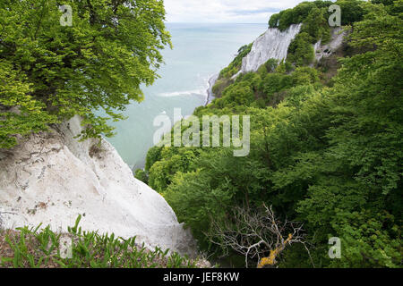 The king's chair is the most famous chalk rock formation of the Stubbenkammer in the national park Jasmund on the - Stock Photo