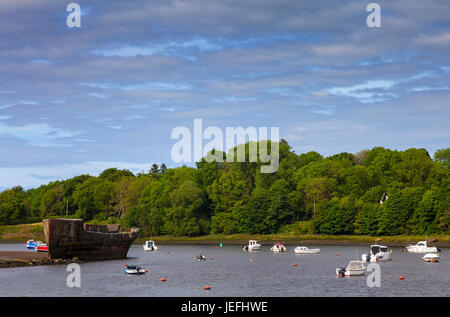 The wrecked 'Creteboom', a concrete boat built in 1917 on the bank of the River Moy, Beleek Woods, Balina, County - Stock Photo