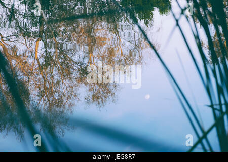 Moon reflection in lake - Stock Photo