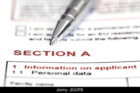 Visa application form details with ballpoint - Stock Photo