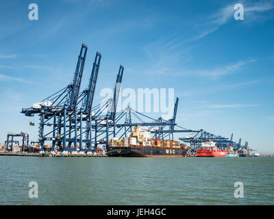 Container Ships Loading and Unloading at Port of Felixstowe Suffolk UK - Stock Photo