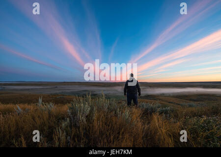 A man stands watching watching the sunrise colour over the Frenchman River Valley in Grasslands National Park; Saskatchewan, - Stock Photo