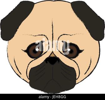 cute face dog pug pet aminal image - Stock Photo