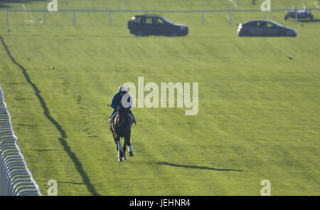 Trainer Kenny McPeek puts Investec Oaks contender racehorse 'Daddys Lil Darling' through her paces on the Epsom Downs racecourse track.  Featuring: Atmosphere, Olivier Peslier, Daddys Lil Darling Where: Epsom, United Kingdom When: 26 May 2017
