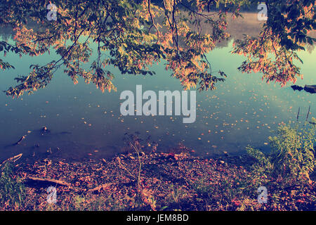 Vintage photo of autumn leaves and background lake - Stock Photo