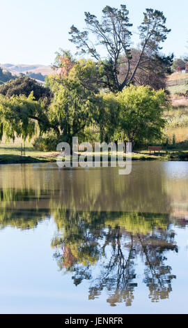 View of Tall Tell Reflected in a Large Lake - Stock Photo