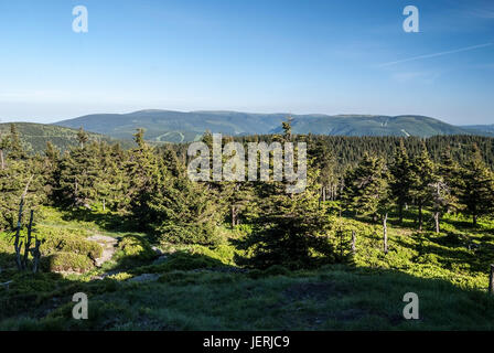 view from Vozka hill with Praded, Petrovy kameny, Dlouhe Strane and other hills, forest and hiking trail in Jeseniky - Stock Photo