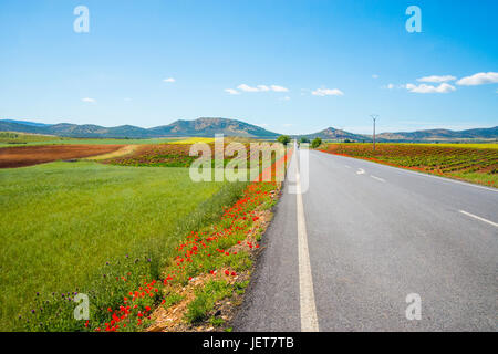 Side road and cultivation fields. Fuente el Fresno, Ciudad Real province, castilla La Mancha, Spain. - Stock Photo