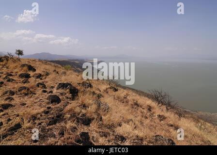 Scenery, nature, Chamo lake, Nechisar national park, south Ethiopia, - Stock Photo