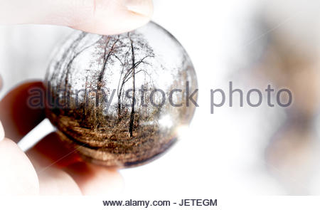 Closeup of a glass ball held by a human hand with trees refecting in the glass - Stock Photo
