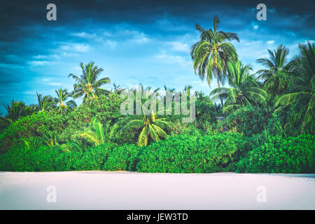 Retro stylized image of tropical island with coconut palm trees. Maldives, Indian Ocean. - Stock Photo