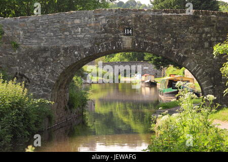 Narrowboats moored on the Monmouthshire and Brecon canal near Llangattock, Brecon Beacons, Powys, Wales -  June - Stock Photo
